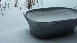 snow3 (1)